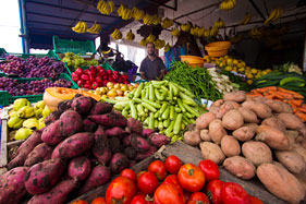 Fresh vegetables in the market, Oualidia